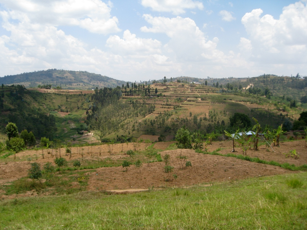 Rwandese Countryside