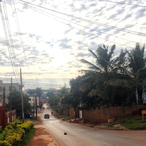 Sunrise over a quiet, leafy street in Kampala